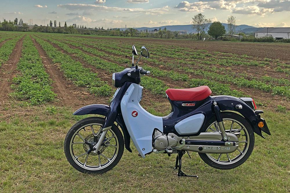 Akár egy vietnámi rizsültetvény is lehetne a háttérben, de ez itt egy hazai ültetvény